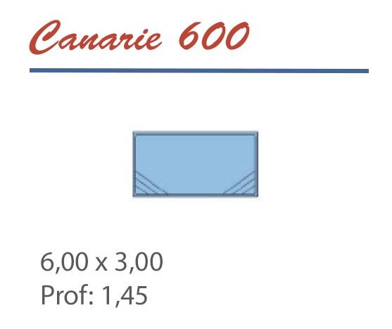 Piscine Rectangulaire 6,00 x 3,00 Profondeur 1,45 Double escalier d'angle