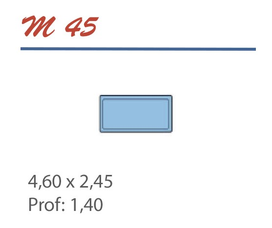 Piscine Rectangulaire 4,60 x 2,45 Profondeur 1,40