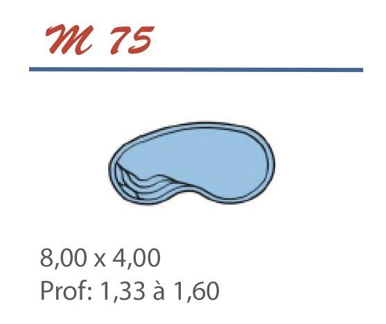 Piscine Haricot 8,00 x 4,00 Profondeur 1,33 à 1,60