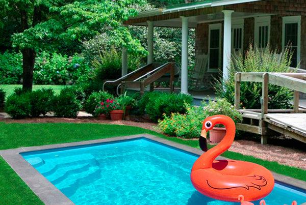 Mimi piscine coque à Perpignan