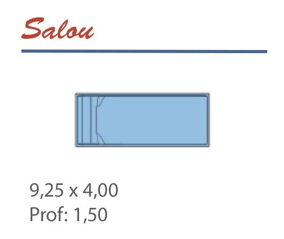 Piscine rectangle 9,25 x 4,00 profondeur 1,50 escalier toute largeur