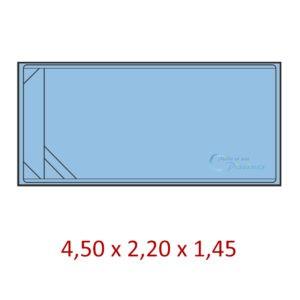 mini piscine rectangulaire coque